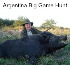 Argentina Big Game Hunt for 2