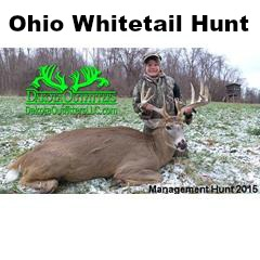 Ohio Whitetail Hunt