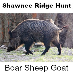 Shawnee Ridge Hunt for Boar, Sheep or Goat