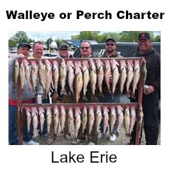Lake Erie Perch or Walleye Fishing Charter